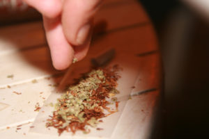 rolling-a-joint-1305610[1]